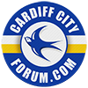 cardiff-city-forum-logo-100.png