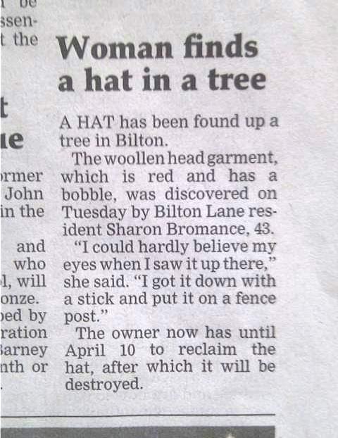 Hat In Tree.jpg